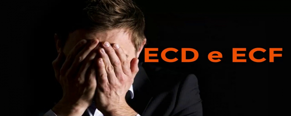 ECD e ECF devem ser entregues até 31 de julho